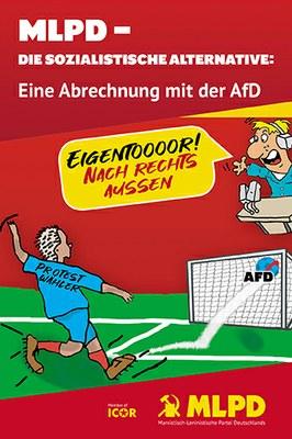 AfD Broschüre 2019.jpg